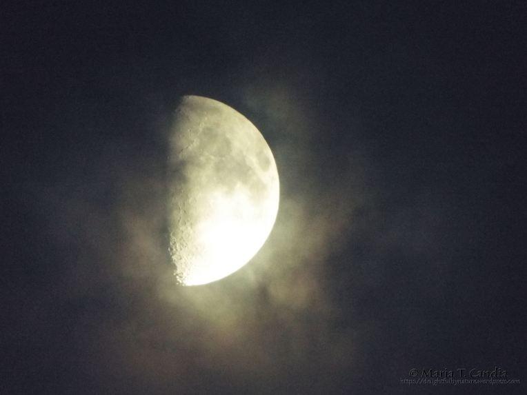 moon2wtr