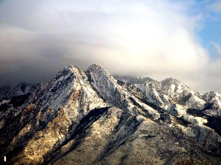 mountainview1wtr