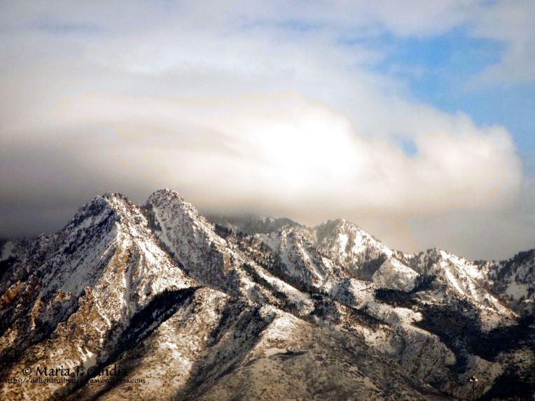 mountainviewfeature